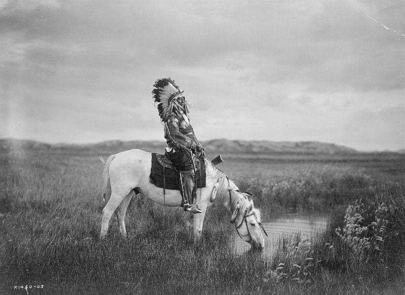 Los Sioux y su cultura