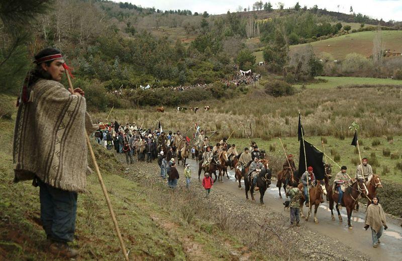 Cultura mapuche